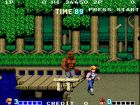 Immagine di Double Dragon