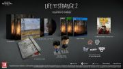 Life is Strange 2 arrives in physical edition in December, in standard version and Collector